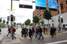 Strassenüberquerung gehörten im dicht besiedelten Raum mit dazu 3